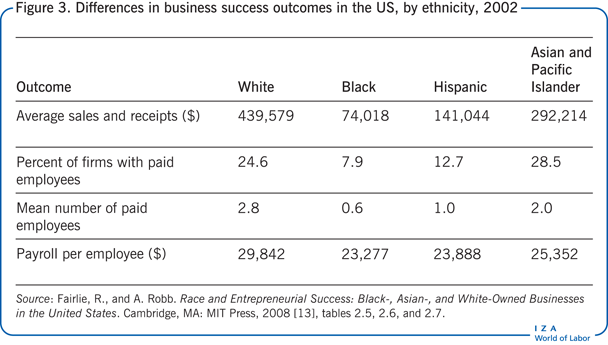Differences in business success outcomes                         in the US, by ethnicity, 2002