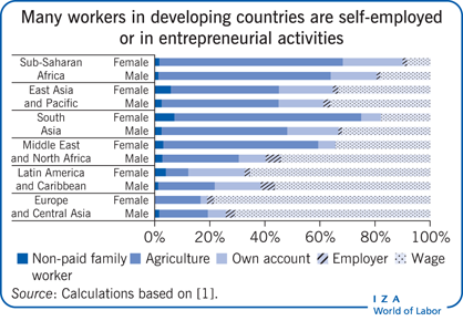 Many workers in developing countries are                         self-employed or in entrepreneurial activities