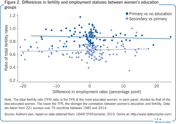 Differences in fertility and employment                         statuses between women's education groups