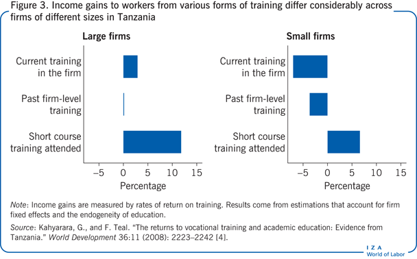 Income gains to workers from various forms of training       differ considerably across firms of different sizes in Tanzania