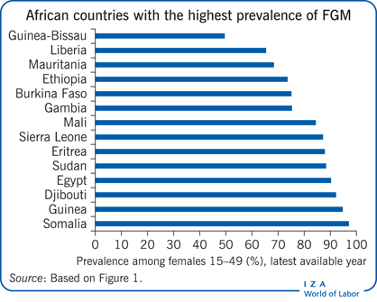 African countries with the highest                         prevalence of FGM