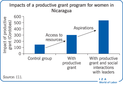 Impacts of a productive grant program for women in               Nicaragua