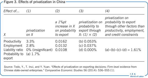 Effects of privatization in China
