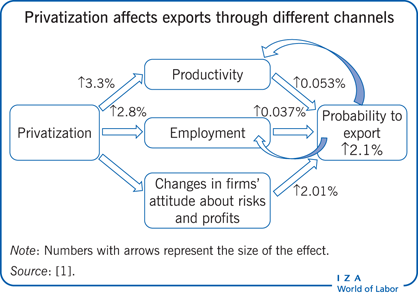 Privatization affects exports through different               channels