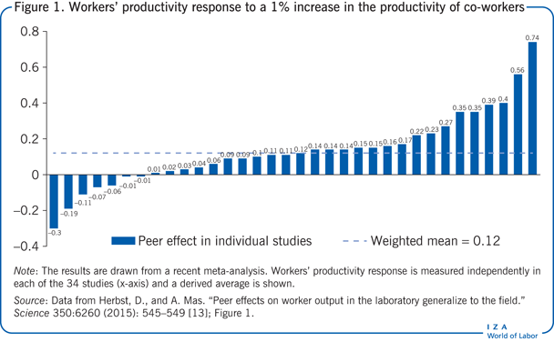 Workers' productivity response to a 1% increase in             the productivity of co-workers