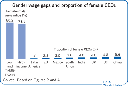 Gender wage gaps and proportion of female                         CEOs