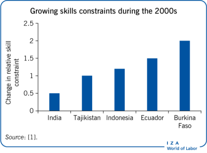 Growing skills constraints during the                             2000s