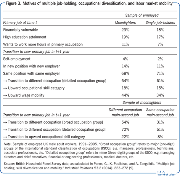 Motives of multiple job-holding, 						occupational diversification, and labor market mobility