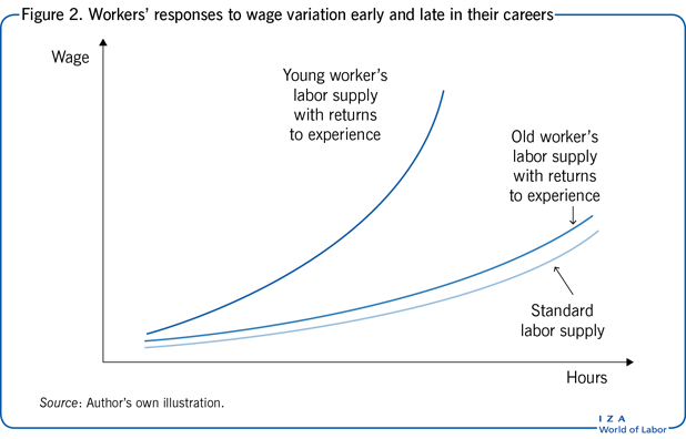 Workers' responses to wage variation early                         and late in their careers