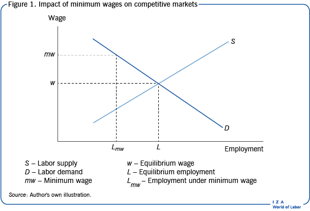 Impact of minimum wages on competitive                         markets