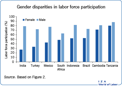 Gender disparities in labor force                         participation