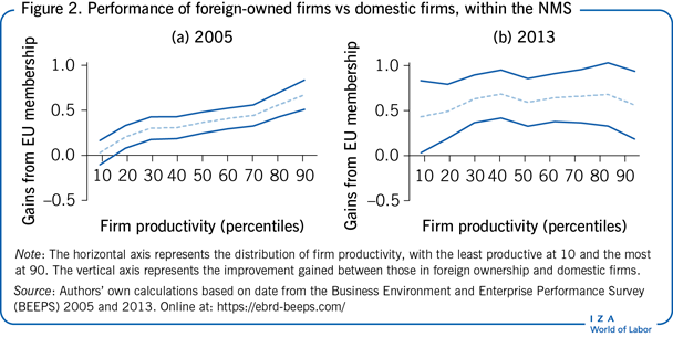 Performance of foreign-owned firms vs domestic firms, within the NMS
