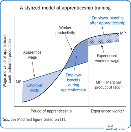 A stylised model of apprenticeship                         training