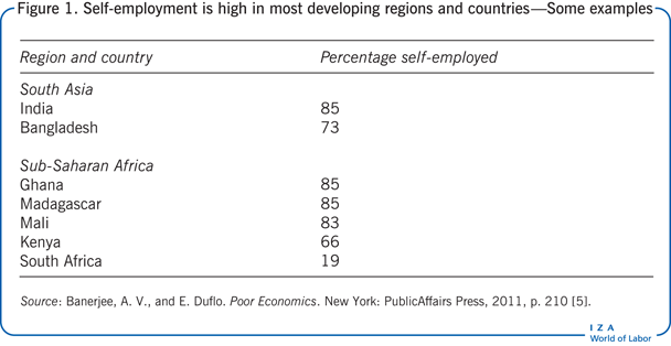 Self-employment is high in most developing                         regions and countries—Some examples