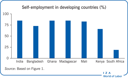 Self-employment in developing countries                         (%)