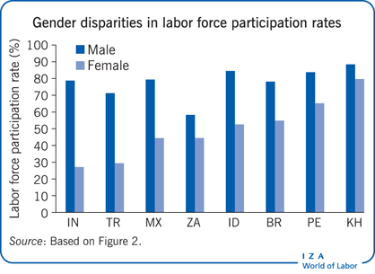 Gender disparities in labor force                         participation rates